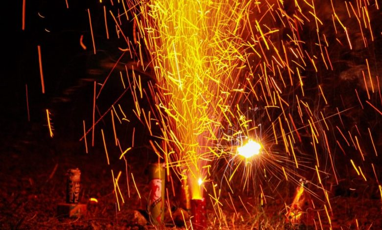 Photo of NGT imposes ban on sale, use of firecrackers in NCR from Nov 9 to Nov 30
