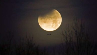 Photo of Chandra Grahan 2020 Timings: See Pictures, Videos of Last Lunar Eclipse of the Year Here