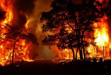 Uttarakhand battles 40 active forest fires, IAF sends help | All you need to know