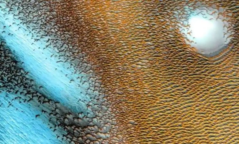 NASA releases stunning image of magical 'sea of dunes' on Mars