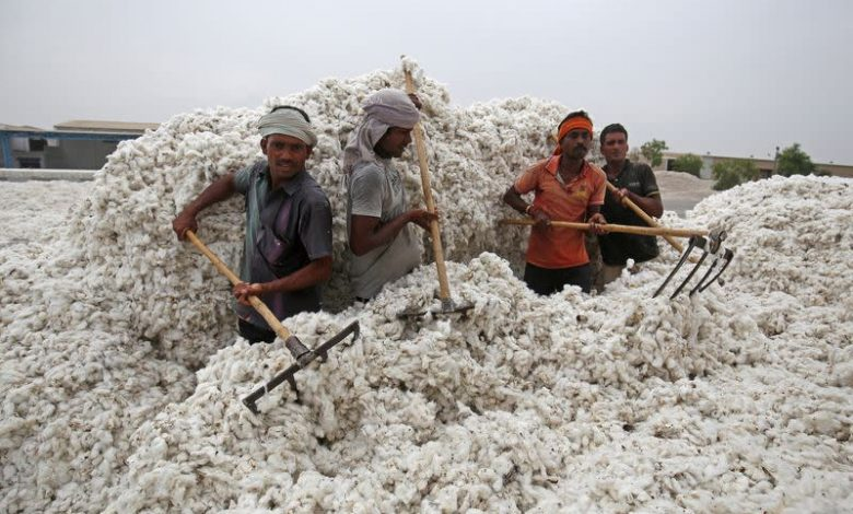 Imran govt rejects proposal to import cotton from India: Pakistan Media
