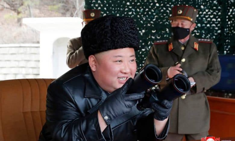 North Korea tells WHO it's still coronavirus-free