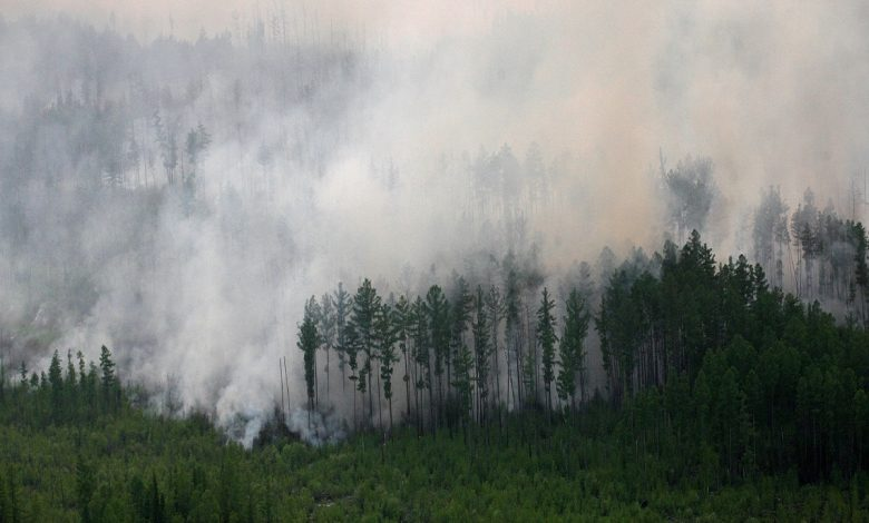 Wildfires, thawing permafrost pose new challenge to curb climate change: Study