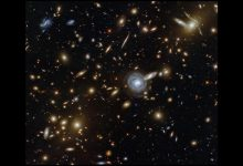 Hubble captures Galactic Menagerie, a cluster jostling with galaxies, bright stars