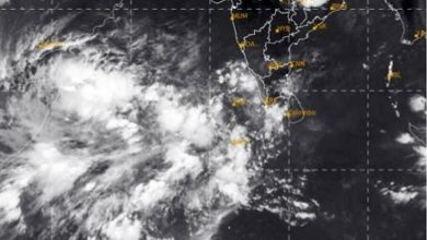 Cyclone likely to form over Arabian Sea in next few days
