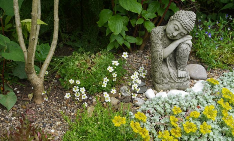 National Garden Meditation Day 2021: Things you need to know about this day