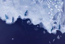Melting of Antarctic ice sheet could raise sea levels by 20%, new study finds