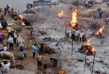 Dozens of bodies float in Yamuna in UP, locals in Hamirpur panic fearing Covid