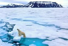 Iceland loses 750 sqkm of glaciers to global warming in 20 years: Study