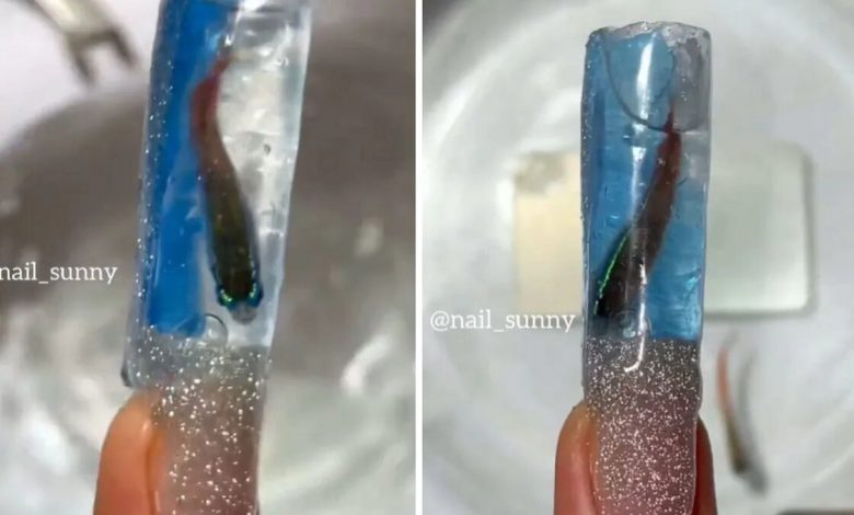 Nail artist uses real fish to do aquarium manicure. Viral video leaves Internet angry