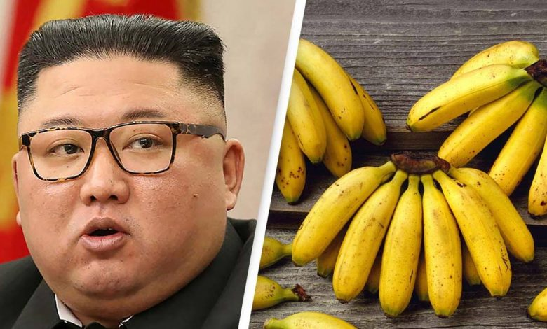 Food crisis in North Korea: Coffee retails over Rs 7,000, Bananas for Rs 3,300 per kg