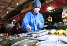 China suspends import of frozen seafood from 6 Indian firms after Covid traces found on packaging