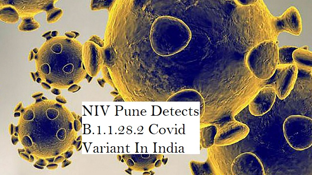 NIV Pune detects new severe Covid variant among some international travellers