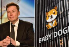 Elon Musk brings new cryptocurrency Baby Doge to spotlight and its price doubles after one tweet