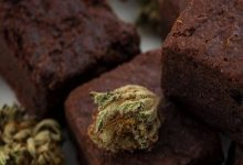 NCB arrests psychologist for baking, selling brownies infused with drugs in South Mumbai