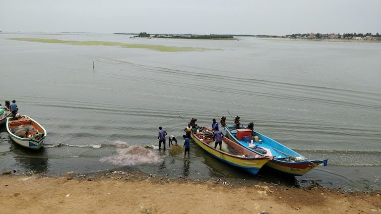 Tamil Nadu minister won't wet his shoes, fishermen carry him from boat to land