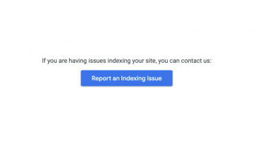 report an indexing issue