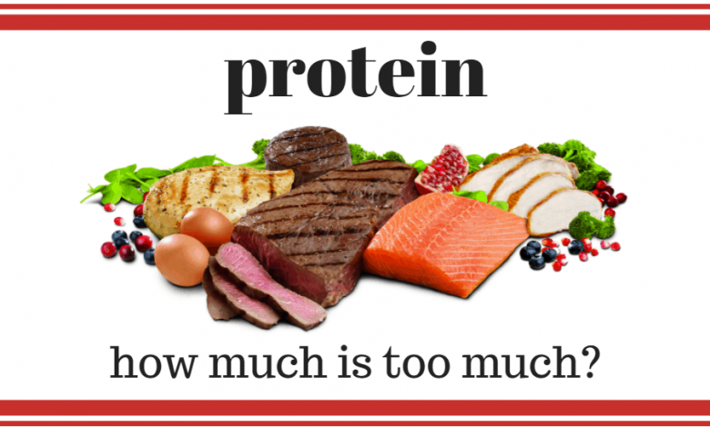 How much protein is too much?