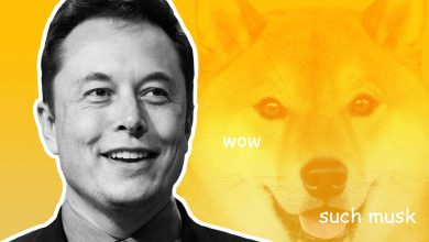 Elon Musk now has a Shiba Inu pet named Floki and of course Dogecoin price has gone up